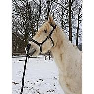 Harrys Horse Kaptoom Hoofdstel Leder Full