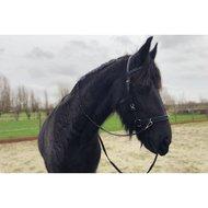 Harrys Horse Kaptoom Hoofdstel Leder Cob