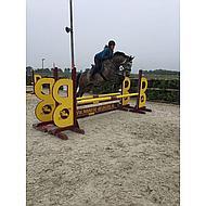 Harrys Horse Singel Deluxe Zwart 135cm