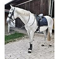 Harrys Horse Hoofdstel S&T Grand Prix Zwart Full