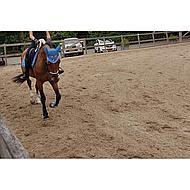 Hkm Peesbeschermers & Strijkkappen Genua Set Wit/zwart Pony