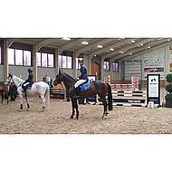 Hkm Strijklappen Flag Achterbenen Vlag Spanje Pony