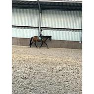 BR Peesbeschermers Event PU neopreen voering Sea Spray Pony