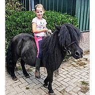 Esschert Schoudertas paard 38x13x30cm