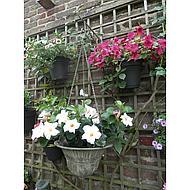 Esschert Aged Metal Green hanging basket L 30x30x18,7cm