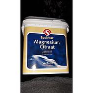Sectolin Magnesium Equivital 1kg
