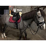 S creme Harrys Horse 326003001555CM Strap Padding Merino