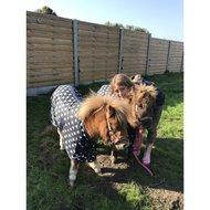 Harrys Horse Vliegendeken Mesh STOUT! Hazel 95cm