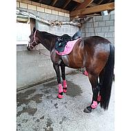 Arma Springschoenen Touch Close Teal Pony
