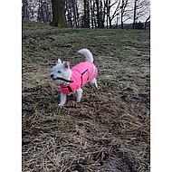 Shires Hondenjasje Waterproof Pink XXXS