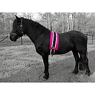Shires Nylon Roller with Fleece Padding Black XFull