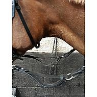 Shires Teugel Black Pony