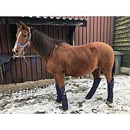 Shires Transport Beschermers Travel Sure Economy Navy Pony