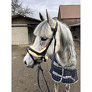 Kavalkade Trense Ivy mit Lammfell Schwarz Pony