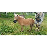 Harrys Horse Grazing Muzzle Air XS
