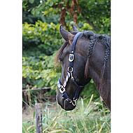 Harrys Horse Halsterset Friesian Pony