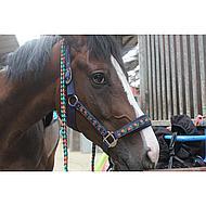 Harrys Horse Halsterset Tulip Shetland