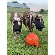 Harrys Horse Speelbal voor Paarden Oranje