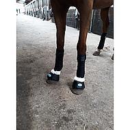 Harrys Horse Springschoenen Flextrainer Wit XL