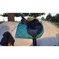 Harrys Horse Zadeldekje Academy Zwart Full VZ
