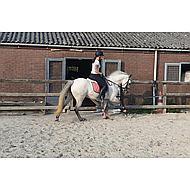 BR Peesbeschermers Event Pu Neopreen Voering Angel Blue Pony