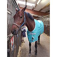 Bucas Freedom Turnout Light Blue Camouflage 155/204
