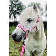 Harrys Horse Halsterset Diva Roze Shetland