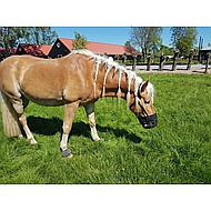 Harrys Horse Grazing Muzzle Schwarz Full