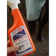 Sectolin Shining Agent Equishine 500ml