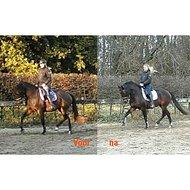 Boehringer Ingelheim Equitop Myoplast Paard 1,5kg