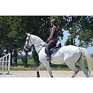Pfiff Jumping Saddle Cloth White Full