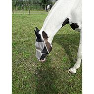 Pfiff Fly Mask Turnout Black Beige Cob