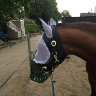 Harrys Horse Vliegenmasker Lycra met Oren XL