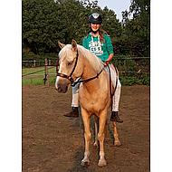 Harrys Horse Rênes Webband Marron Full