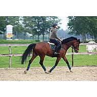 Harrys Horse Bandages Acryl 3 M. 4 St. Geel