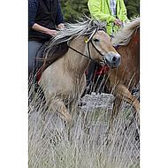 Harrys Horse Bokkebit Beweegbare Scharen 14.5