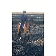 Peesbeschermers BR Event Pu met neopreen Paars - Pony