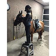 BR Vliegennetje Melange Classic M Tea/Chocolate Pony