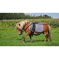 Premiere Lunging Girth Simple Lining Black Full