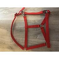 Premiere Head Collar Standaard Poly Red Full