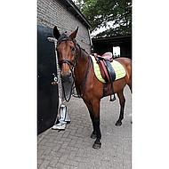 Harrys Horse Beugels Compositi Profile Premium Zwart Kind