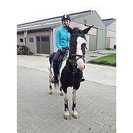 Harrys Horse Beugels Compositi Premium Geel Volwassen