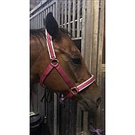 Bucas Halter Dublin Striped Navy Pony