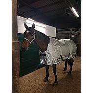 Bucas Halfter Dublin Silber/Navy Pony