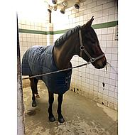 Amigo by Horseware Mio Stable Rug Heavy Dubble Navy 80/120