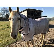 Mio Pony Fly Rug Bronze/Navy 95/145