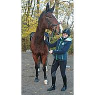 Rambo by Horseware Micklem Multibridle Black Full
