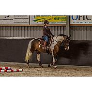 Harrys Horse Gamaschen Flextrainer Air Braun XL