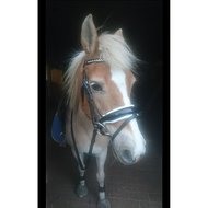Harrys Horse Bridle Chique Brown Full