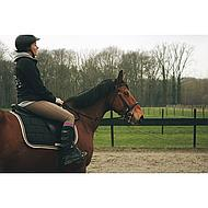 Harrys Horse Thermolaars Thermo-Rider 36